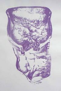 Schönheit von innen  59,4 x 84 cm, Siebdruck 2012