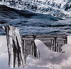 Nature  15,5 x 15 cm, Collage 2007