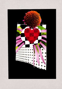 Power of flower  20,9 x 29,7 cm, Collage 2011