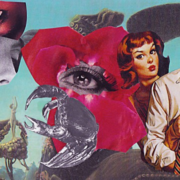 Krebs  18,5 x 9,8 cm, Collage 2010